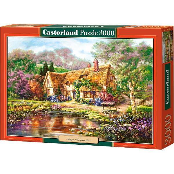 c7801d9c794 Castor CASTOR 3000 EL. Copy of Twilightat Woodgreen Pon PC-300365 € 19.60